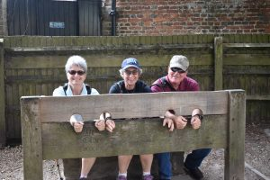 American travelers captured in stocks!